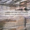 CCS-cover